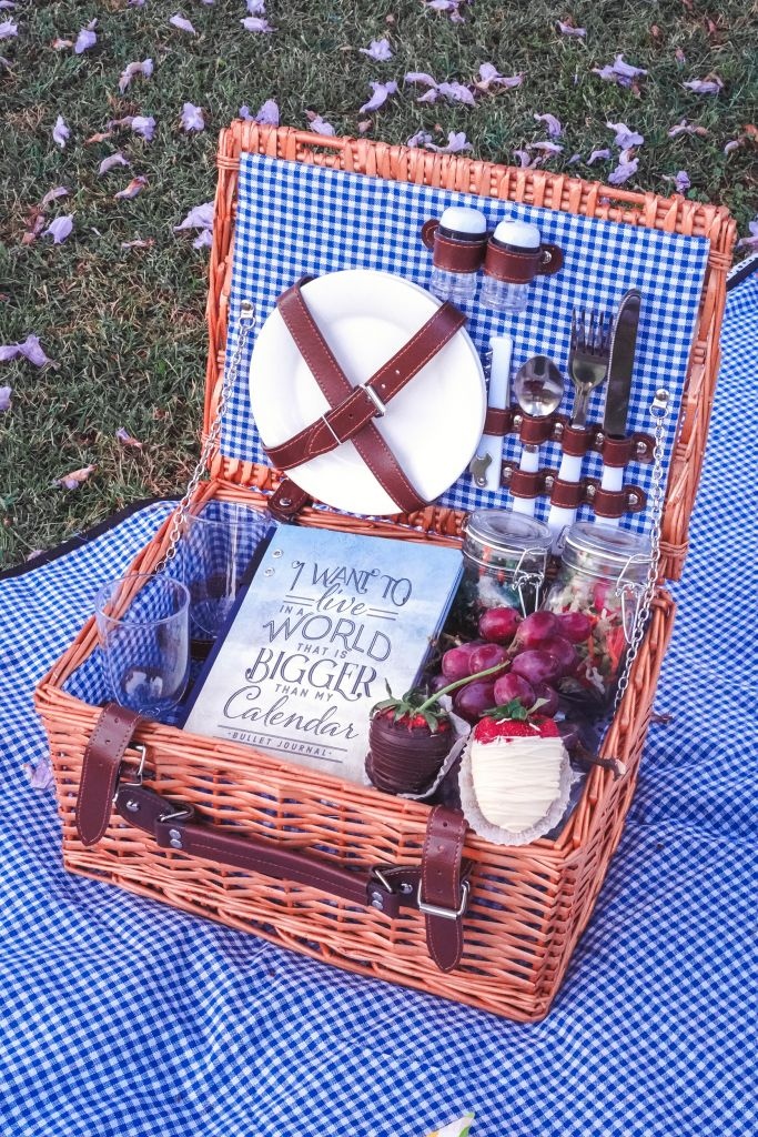 Up Inspired Picnic on blue gingham blanket, California Picnic Set For Two, I Want to Live in a World that Is Bigger Than My Calendar Journal