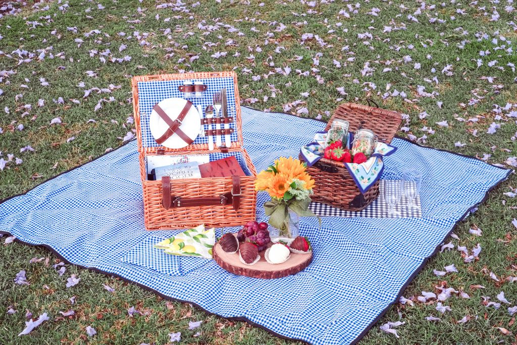 Up Inspired Picnic on blue gingham blanket, Pottery Barn Daytripper basket, California Picnic Set For Two