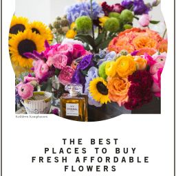 Top 5 Friday: Best Places to Buy Fresh Affordable Flowers