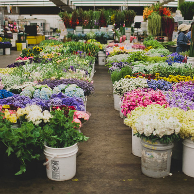 Top 5 Friday: Best Places to Buy Fresh Affordable Flowers, Los Angeles Flower Mart