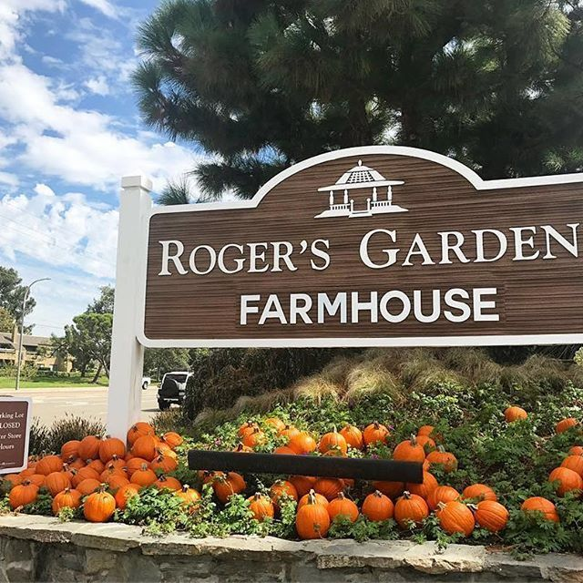 Roger's Gardens Entrance Sign with pumpkins