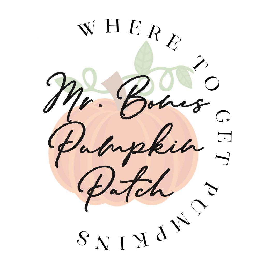 Where to Get Pumpkins: Mr. Bones Pumpkin Patch
