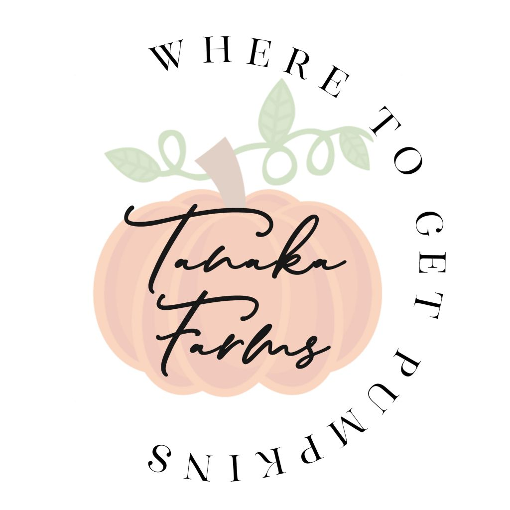 Where to Get Pumpkins: Tanaka Farms