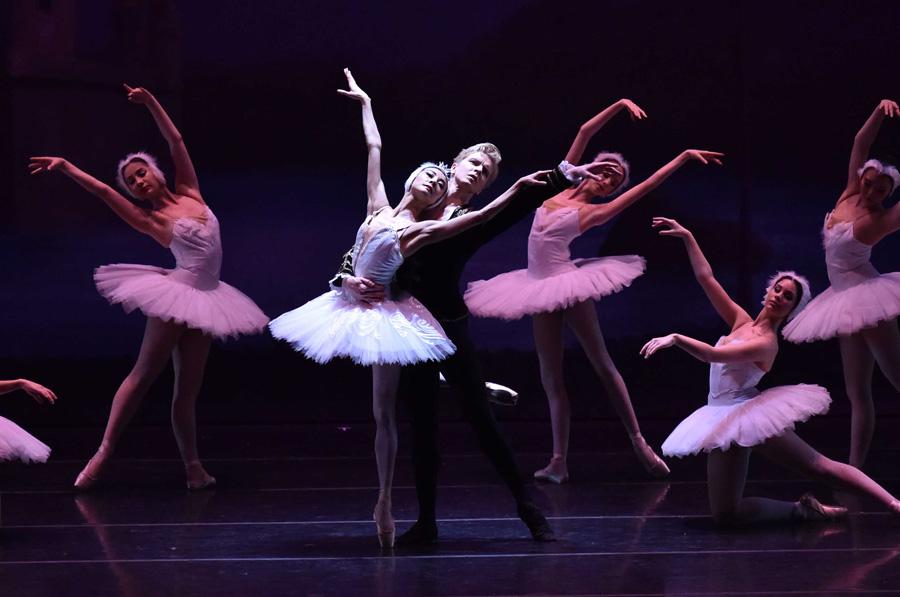 Festival Ballet Theatre Swan Lake